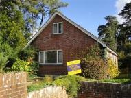 Chalet to rent in Paget Close, Wimborne...
