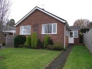 3 bed Detached Bungalow in Lacy Drive, Wimborne...