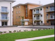 Apartment for sale in Hawkins Road, COLCHESTER...