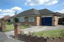 Detached Bungalow for sale in Ambleside, Plas Newton...