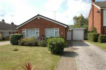 Lowerfield Road Detached Bungalow for sale