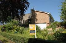 4 bed Detached Bungalow for sale in School Lane...
