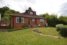 4 bedroom Bungalow in Caversham