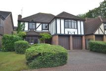 Detached property for sale in Lower Earley