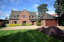 Detached home for sale in Chalkhouse Green