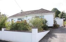 Detached Bungalow in Westerlands Road...