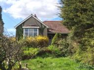 Semi-Detached Bungalow in Higher Fernleigh Road...