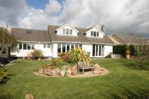 Daisy Park Detached house for sale