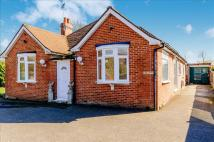 Pound Lane Detached Bungalow for sale