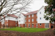 new Apartment for sale in Mutton Hall Hill...