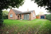 3 bed Detached Bungalow in Marsh Lane...