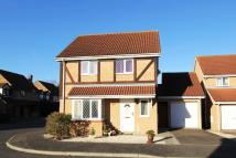 Detached property for sale in Tamar Close, St Ives