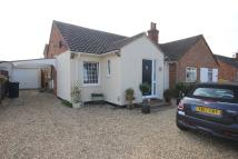 Semi-Detached Bungalow to rent in Hemingford Road, St Ives