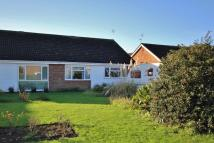 Semi-Detached Bungalow to rent in The Trundle, Somersham...