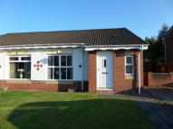 2 bed Semi-Detached Bungalow for sale in Thistledown Grove...