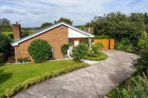 Back Lane Bungalow for sale