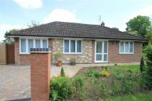 Detached Bungalow for sale in Colworth Road, Bedford