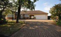 4 bedroom Detached Bungalow in East Road, West Mersea,