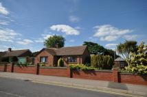 Yorick Road Bungalow for sale