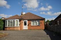 Detached Bungalow for sale in Yorick Road, West Mersea