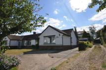 2 bed Semi-Detached Bungalow for sale in Beach Road, West Mersea