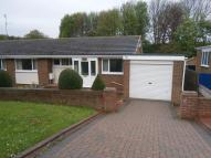 Semi-Detached Bungalow to rent in Woodlands, Seaham, SR7