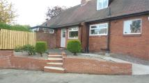 2 bed Semi-Detached Bungalow to rent in West Road...