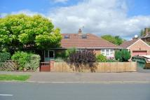 Detached Bungalow for sale in Park Avenue, Longlevens...