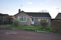 3 bedroom Detached Bungalow in 1 Hawthorne Close Newport