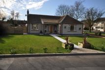 3 bedroom Detached Bungalow for sale in 78 Buttfield Lane Howden
