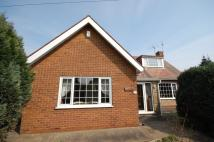 3 bed Detached Bungalow in San Remo, 41...