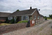 Detached Bungalow for sale in 33 Park Road, Barlow
