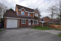 Detached property in St James Court, Rawcliffe