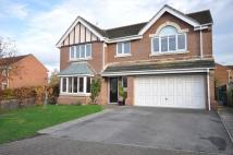 Detached house in 48 Punton Walk, Snaith...