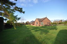 3 bedroom Detached Bungalow in Field View, Mill Lane...