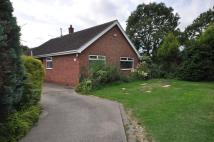Detached Bungalow in 3 Butterfield Close...