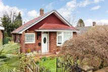 Detached Bungalow for sale in Coniston Gardens, SO30