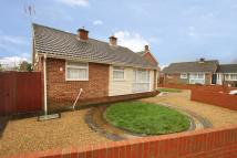 3 bedroom Detached Bungalow in Waterbeech Drive...