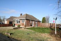 2 bedroom Detached Bungalow in Sharon Road, West End...