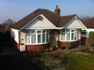 Detached Bungalow for sale in Upper Northam Road...