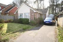 Detached Bungalow for sale in Woodside Way, Hedge End...