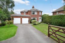 LOWER ST. HELENS ROAD Detached property for sale