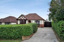 3 bedroom Detached Bungalow for sale in Netley Firs Road...