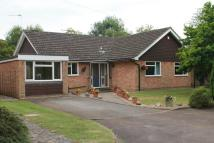 4 bed Detached Bungalow in Preston Grove, Ashtead