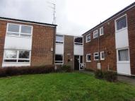 1 bedroom Apartment in Montague Crescent...