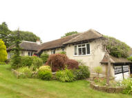 Detached Bungalow for sale in Kimsan Croft, Streetly...