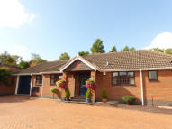 Detached Bungalow for sale in Ollison Drive, Streetly...