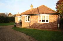 Bungalow for sale in Thetford Road, Watton