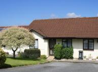 Terraced Bungalow for sale in Snowdrop Close, Honiton