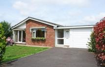 The Pines Detached Bungalow for sale